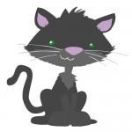 fanti Motiv Katze