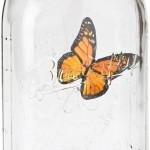 Elektronischer Schmetterling getdigital